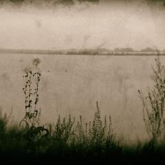 landschap8