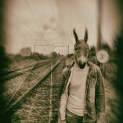 Donkey-Destination Anywhere
