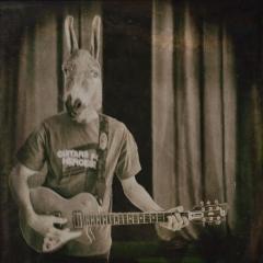 Donkey-Groupie