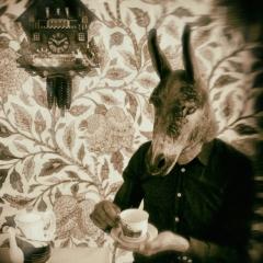 Donkey-Teatime