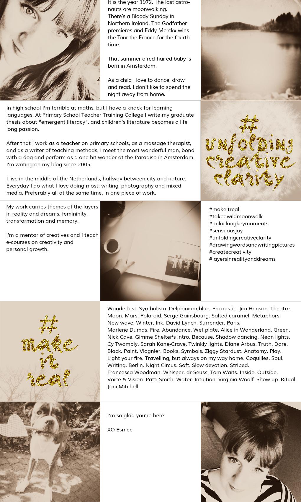 www.studiopolle.com